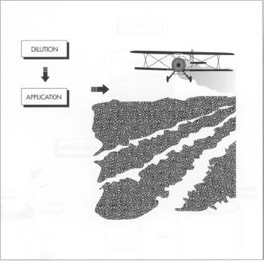 After receiving the pesiticide, farmers dilute it with water before applying it. Application can involve crop dusting with small airplanes or using sprinklers or tractors. Small farmers may even use hand-held sprayers.