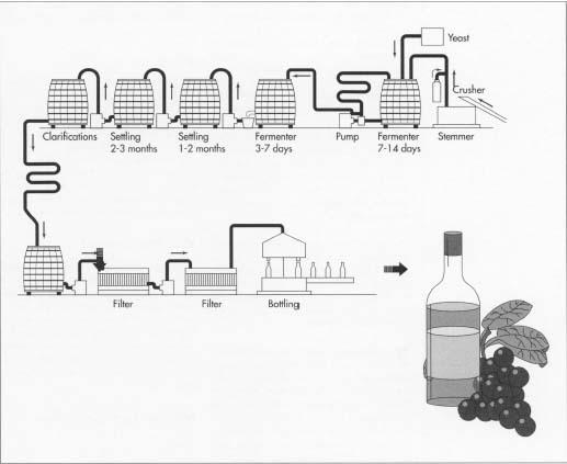 wine making process flow diagram