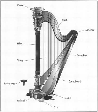 A modern concert harp stands about 70-75 in (1.8-1.9 m) high, is about 40 in (1 m) wide, weighs about 70-90 lb (32-41 kg), and has 47 strings, ranging in size from a few inches to several feet in length.