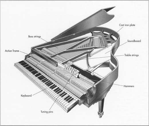 Pianos have the greatest range of any instrument and over 2,500 parts. They are considered to belong to both the string family of instruments, because a piano's strings produce its sounds, as well as the percussion family, because the sound is produced when a hammer strikes a string.