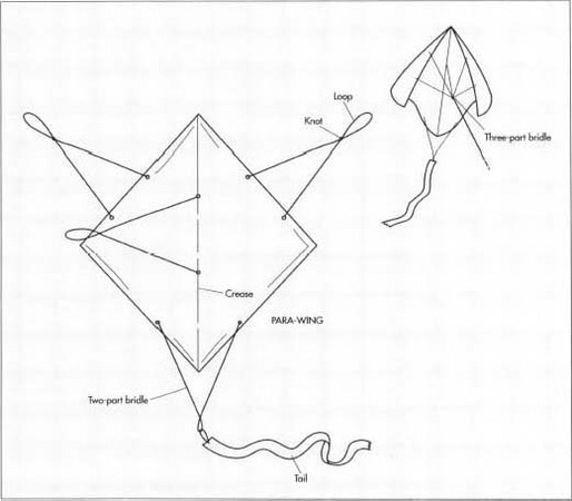 The para-wing kite is a seemingly simple kite, consisting of a square of light material (cloth at first, now usually plastic) without any sticks or other parts to hold it in place. Proper length and placement of the cords which make up the bridle enable the para-wing to fly with great stability despite the limpness of its body.