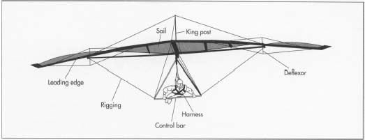 A hang glider consists of a wing, a frame, cables, and items to hold these parts in place. The wing, also known as the sail, is made from a strong, light plastic. The frame of a hang glider, also known as the airframe, is made from an alloy of aluminum and other metals, such as magnesium, zinc, and copper.