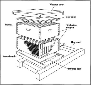 A typical hive used in beekeeping.