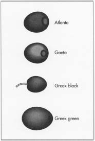Different types of olives.