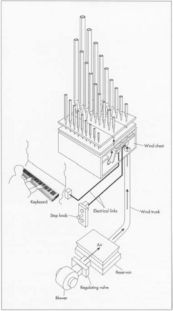 Powered by a rotary blower, a mechanical pipe organ creates sound by linking the console to the valves which control the Row of air to the pipes with cranks, rollers, and levers. The blower moves air through the wind trunk to the wind chest. Stop knobs open and close specific rows of pipes. When a row is open, the air can flow from the wind chest to the pipes as the keyboard is played, creating sound.
