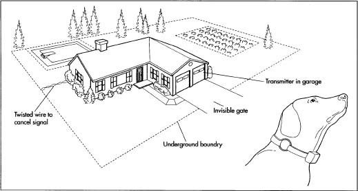 underground dog fence diagrams  diagrams  wiring diagram